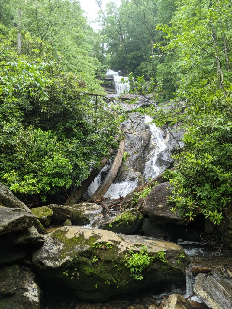Holcomb Creek Falls is a series of falls cascading down a rock face between trees that hug tight to the sides of the creek.